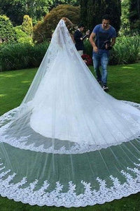 Double Tier Cathedral Bridal Veil With Lace Applique Along The Edge