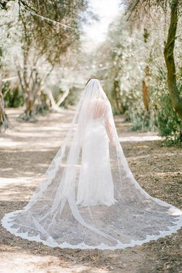 One Tier Cathedral Wedding Veil With Lace Along The Edge