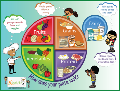 Download:  My Plate - Five Food Groups Poster