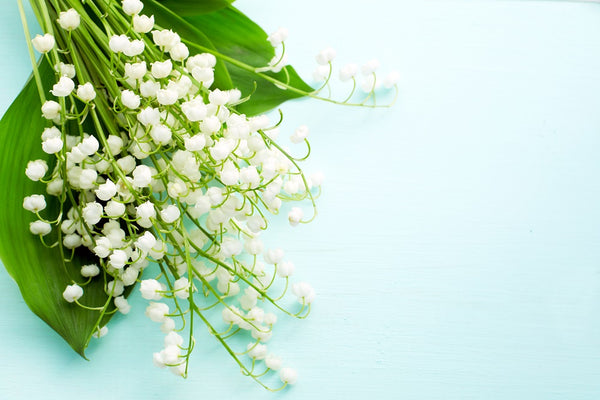 lily-of-the-valley flower bouquets - wedding flowers sunshine coast