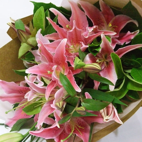Pink Lilies Delivered Sunshine Coast ~ Pink Lily Wrap