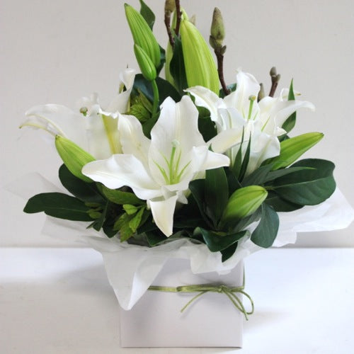 White Lily Box Delivered Sunshine Coast ~ Oriental Lily Box