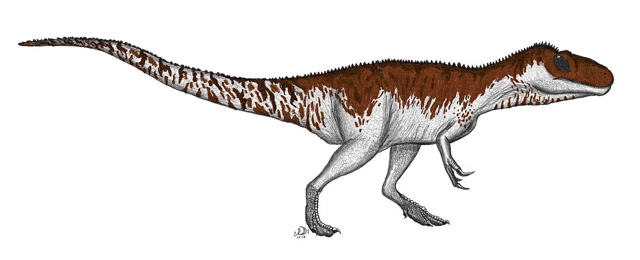 Photo de dinosaure carnivore Afrovenator