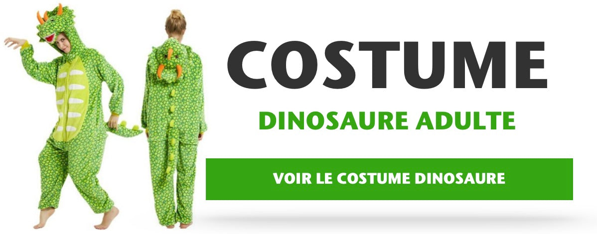 Costume Complet Dinosaure Adulte