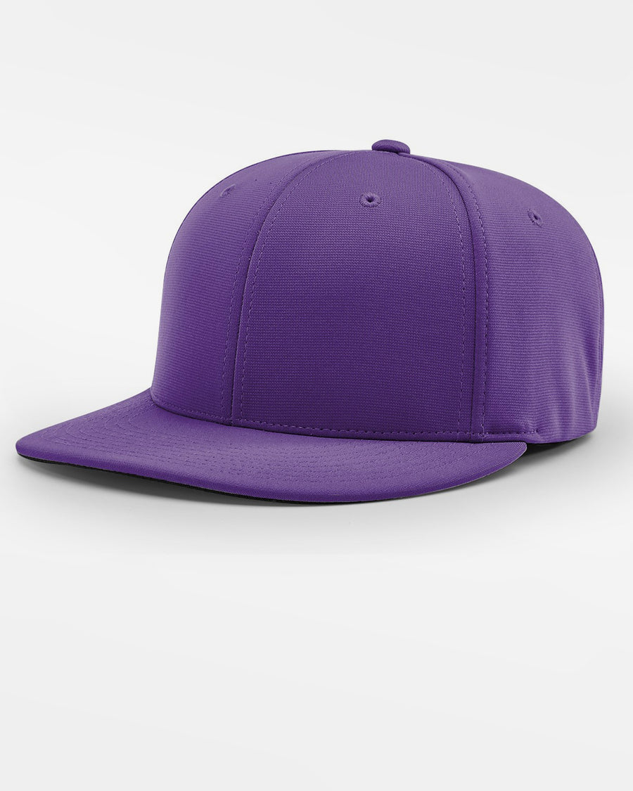 Richardson PTS20 Flexfit Cap, purple-DIAMOND PRIDE