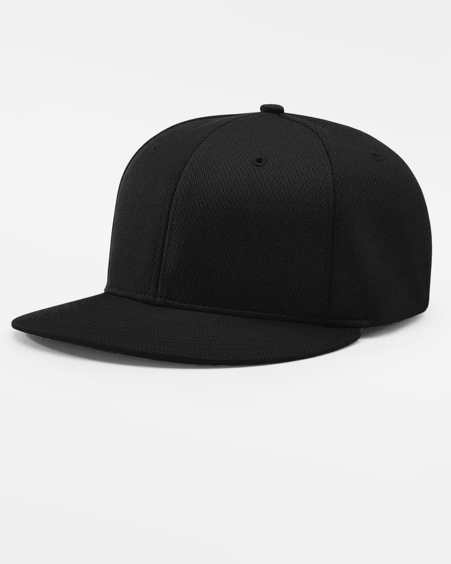 Richardson PTS40 Flexfit Cap, schwarz-DIAMOND PRIDE