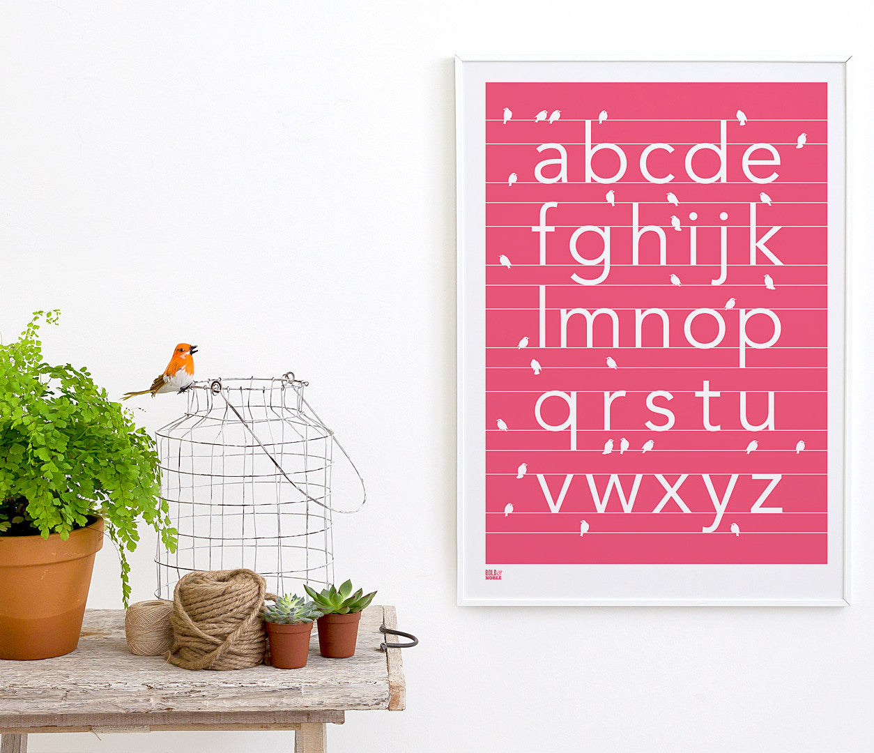 'Birds A-Z' Alphabet Art Print in Raspberry Sorbet