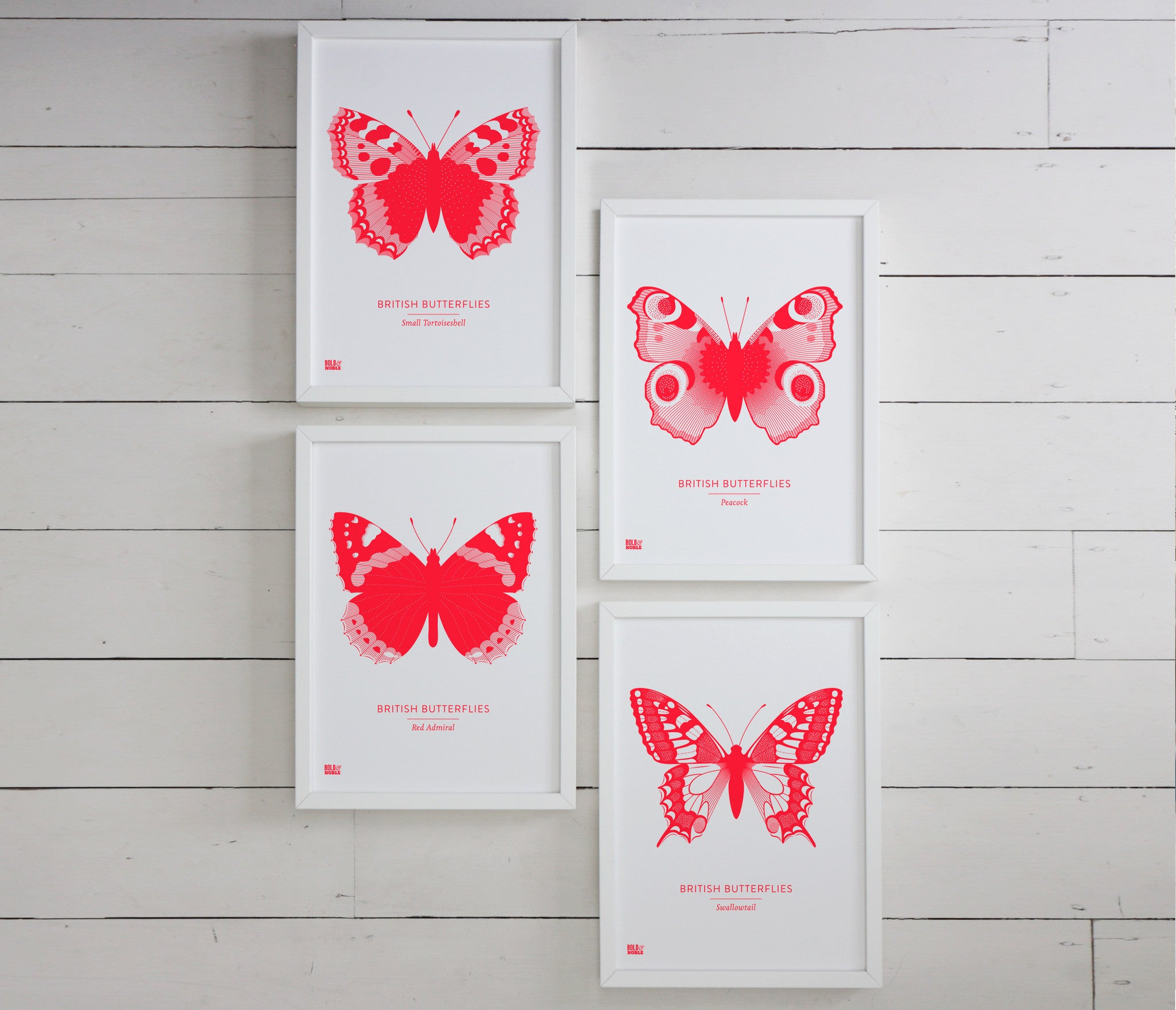 British Butterflies Art Print in Neon Pink, Modern Print Designs for the Home