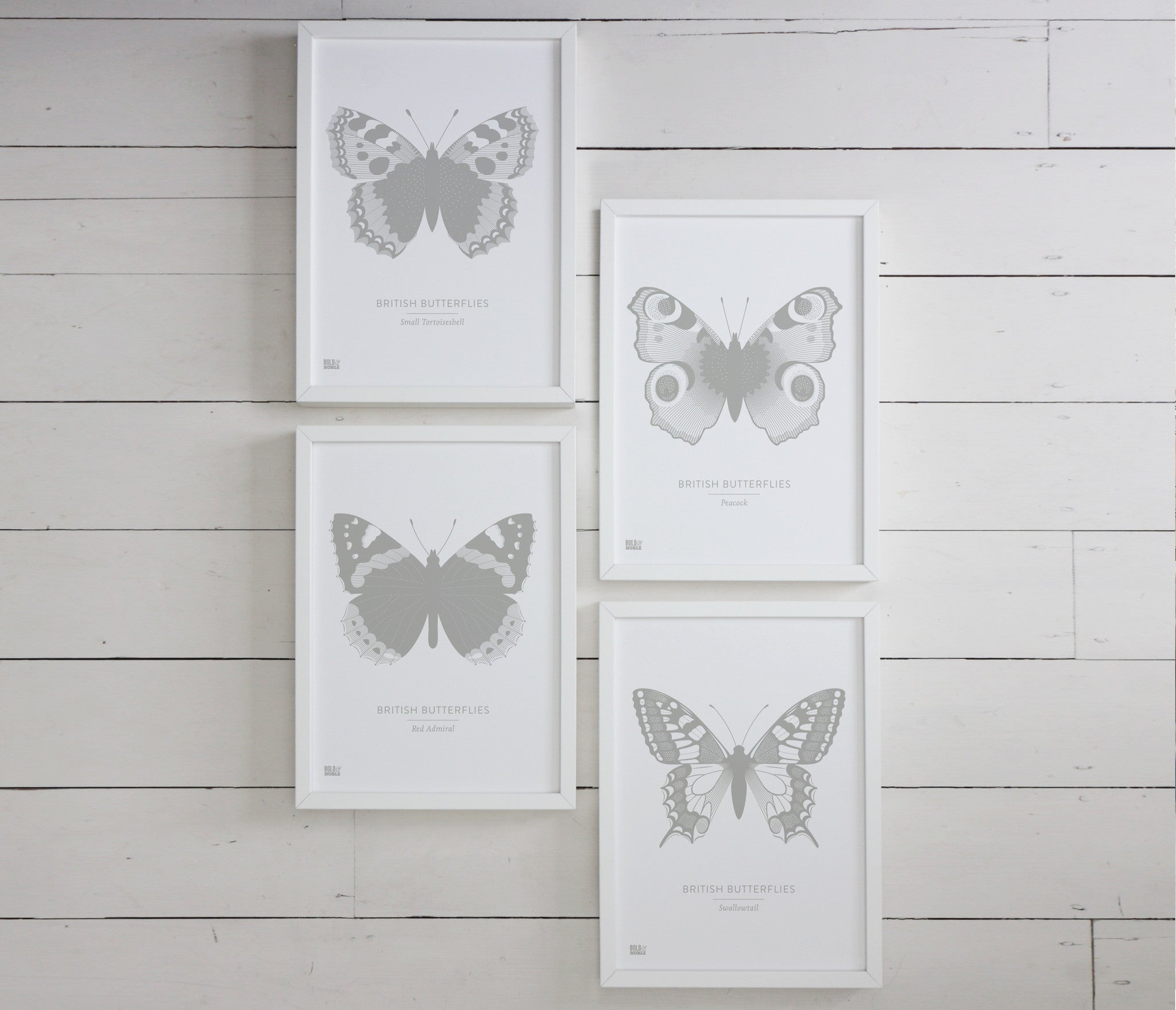 British Butterflies Art Print in Grey, Modern Print Designs for the Home