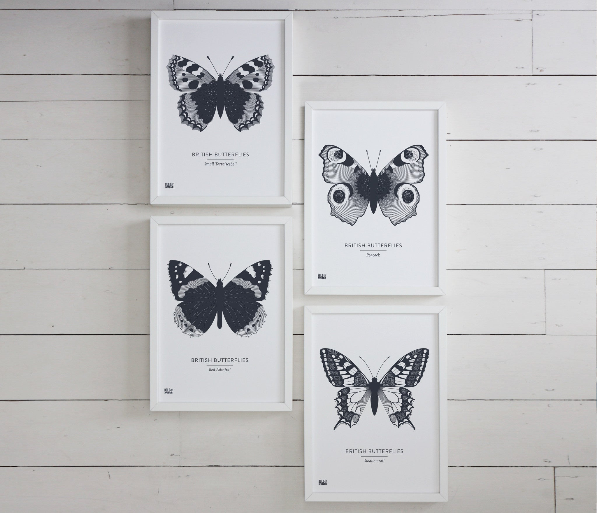 Set of Four 'British Butterflies' in Sheer Slate