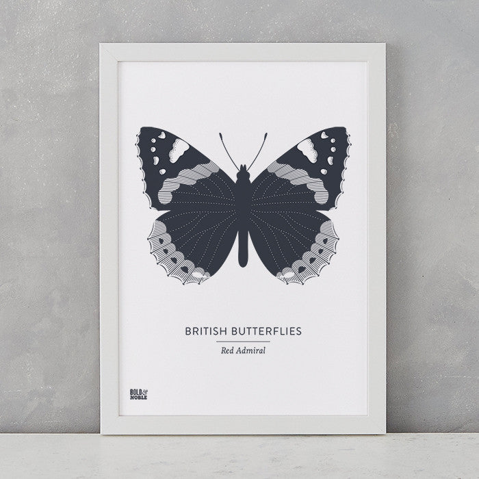 British Butterflies 'Red Admiral' Print in Sheer Slate