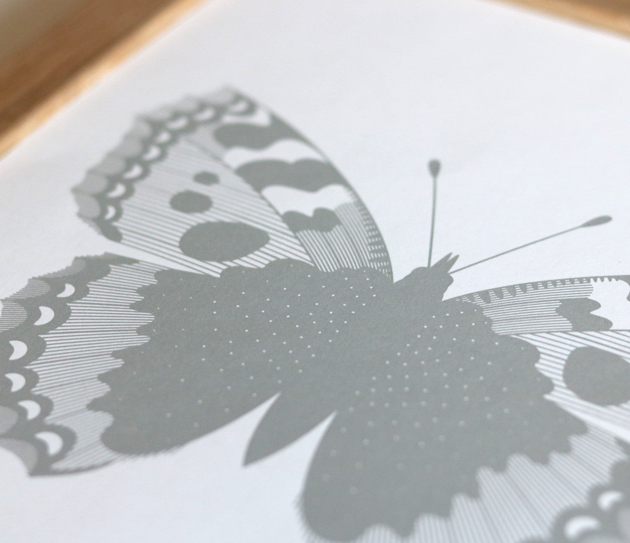 Close up of illustrated British Butterflies in Grey
