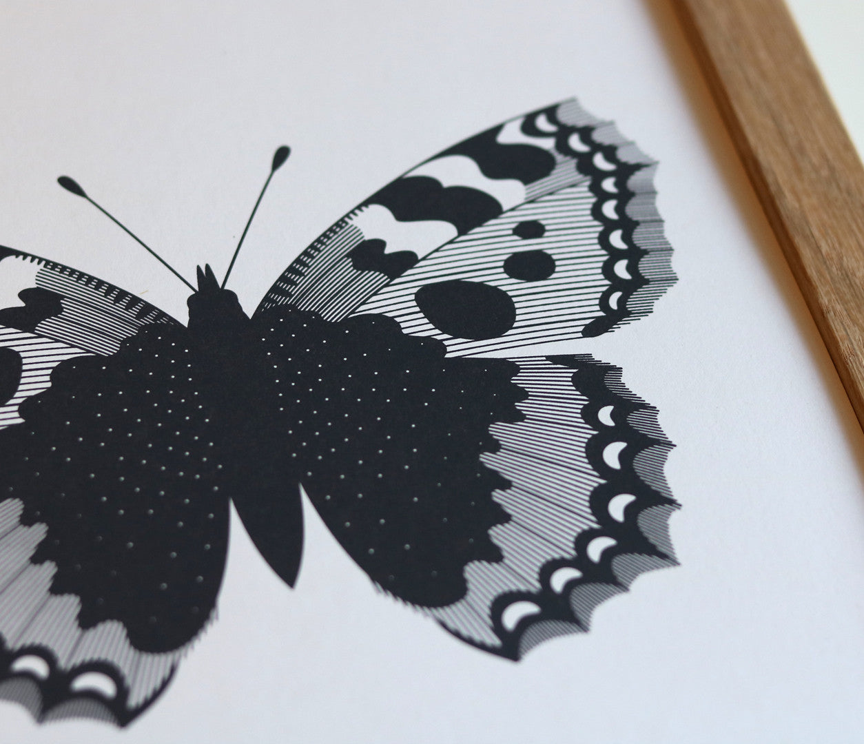 Close up of illustrated British Butterflies in Dark Slate Grey
