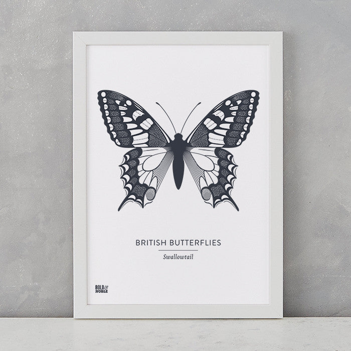 British Butterflies 'Swallowtail' Print in Sheer Slate