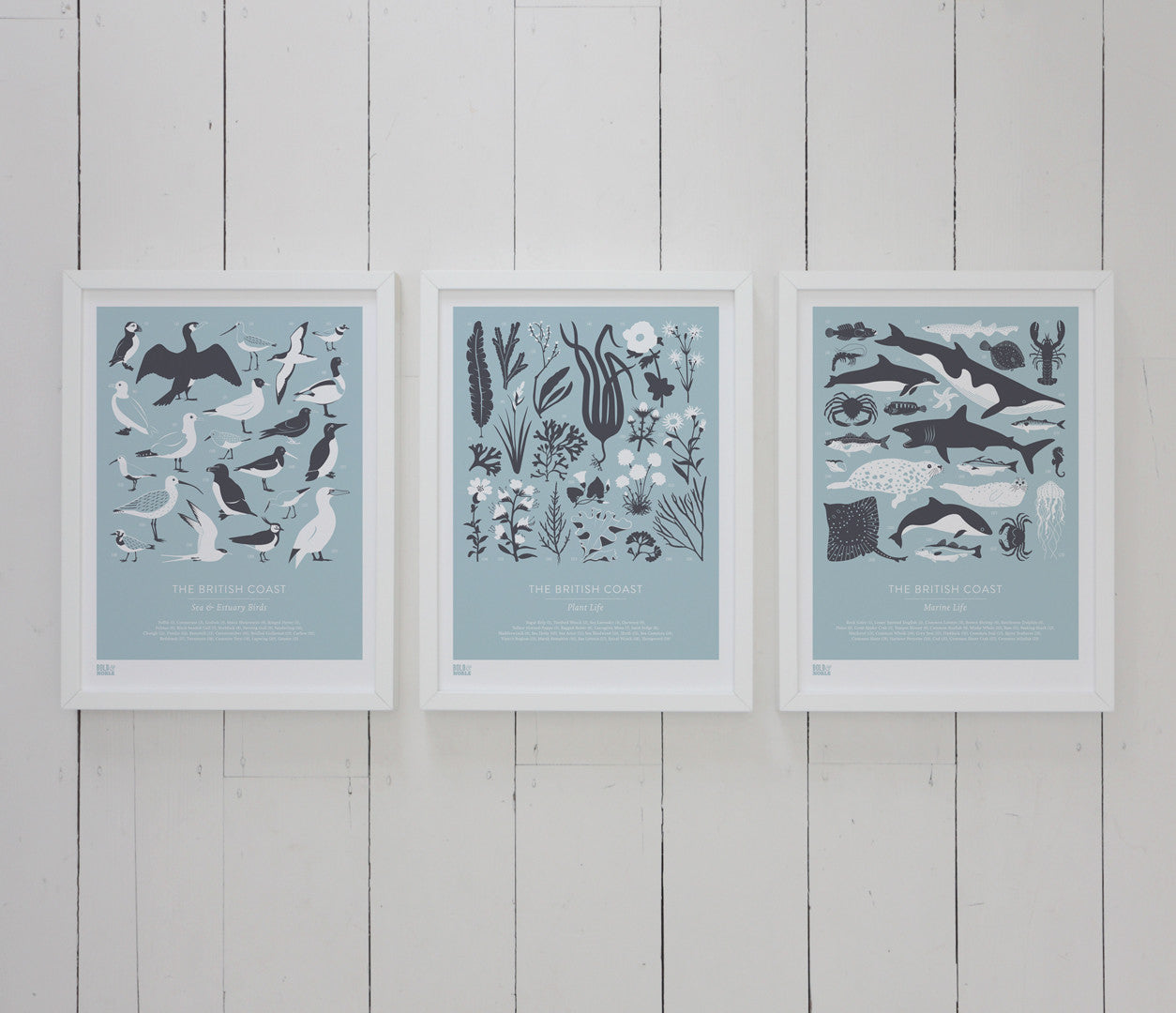 Wall art ideas, economical screen prints, Set of 3 British Coast Birds, Plants and Marine life in duck egg blue