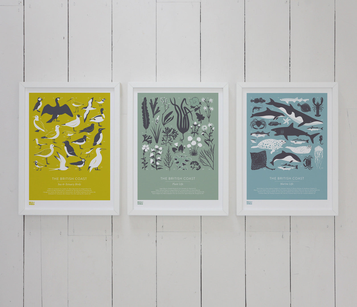Wall art ideas, economical screen prints, Set of 3 British Coastal Plants, Birds and Marine Life prints