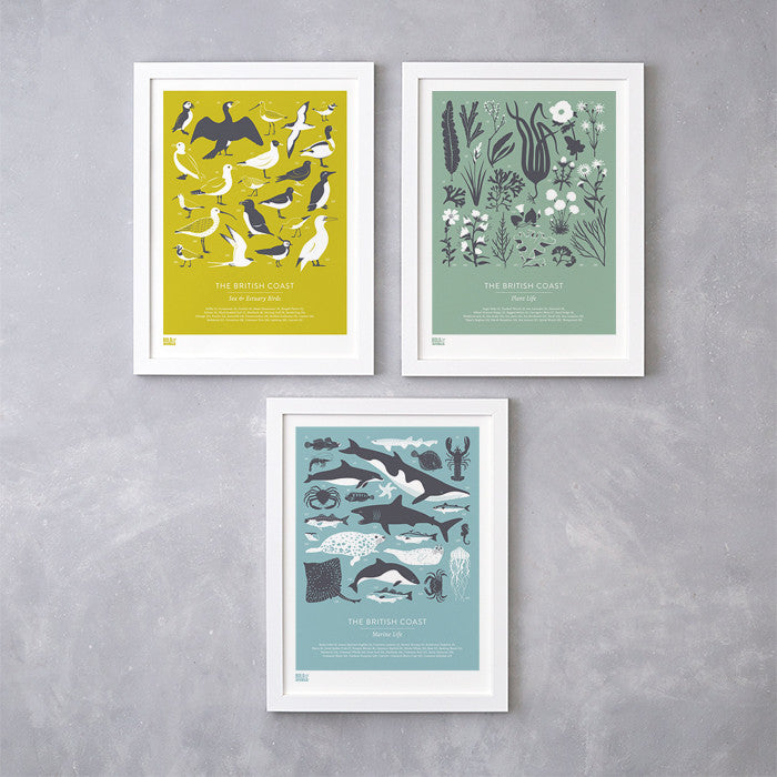 'British Coast: Set of 3' Prints in Yellow, Blue and Green