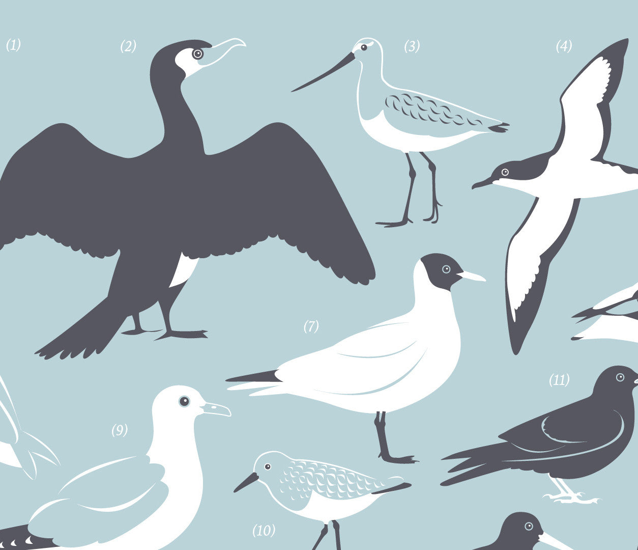 Close up of British Coastal Birds Screen Print in duck egg blue