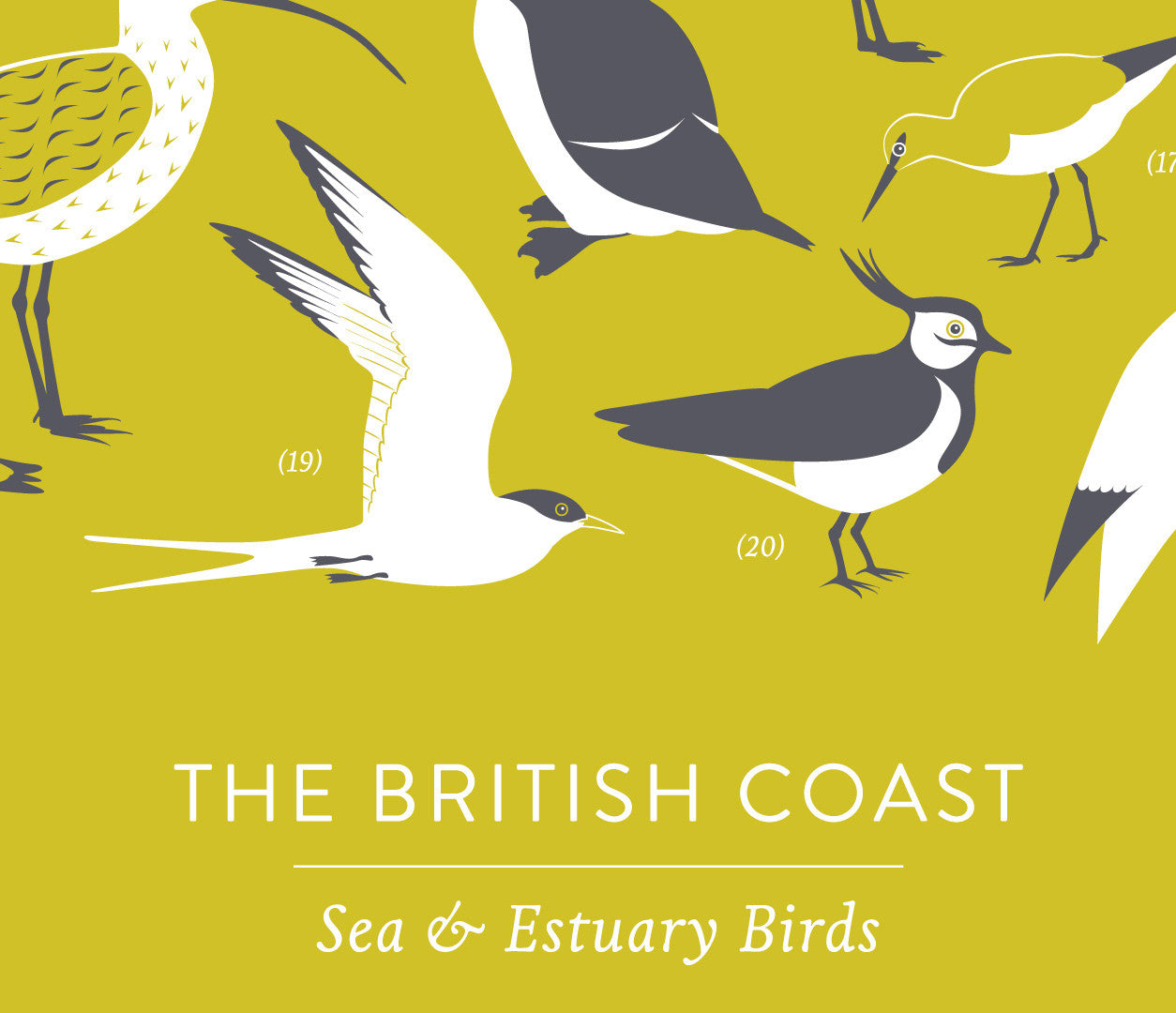Close up of British Coastal Birds Screen Print in yellow moss