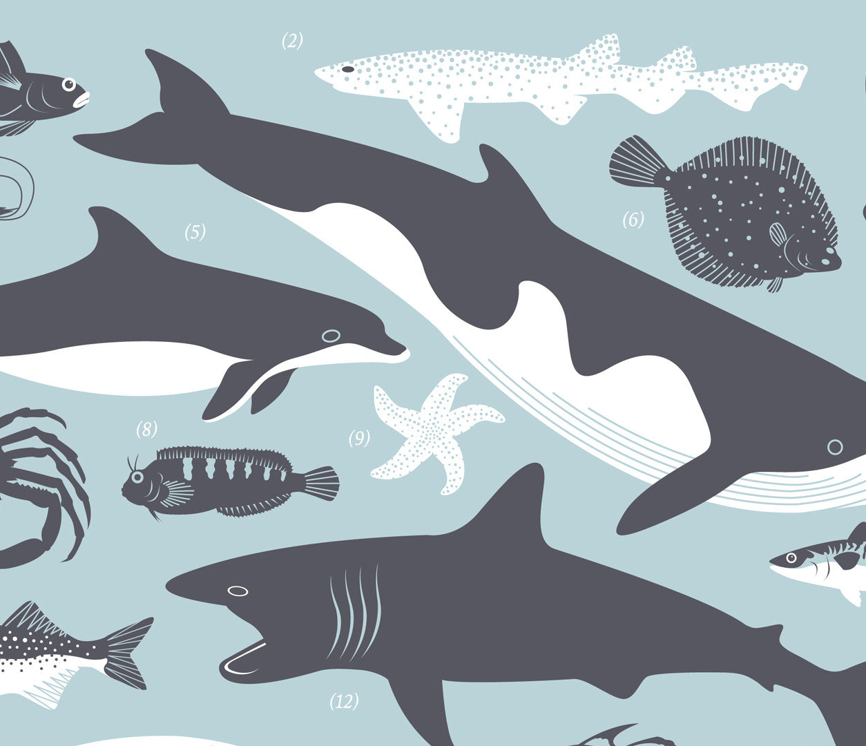 Close up of British Coastal Marine Animals Screen Print in duck egg blue
