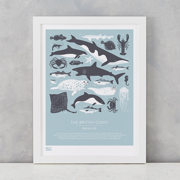'British Coast: Marine Life' Print in Duck Egg Blue