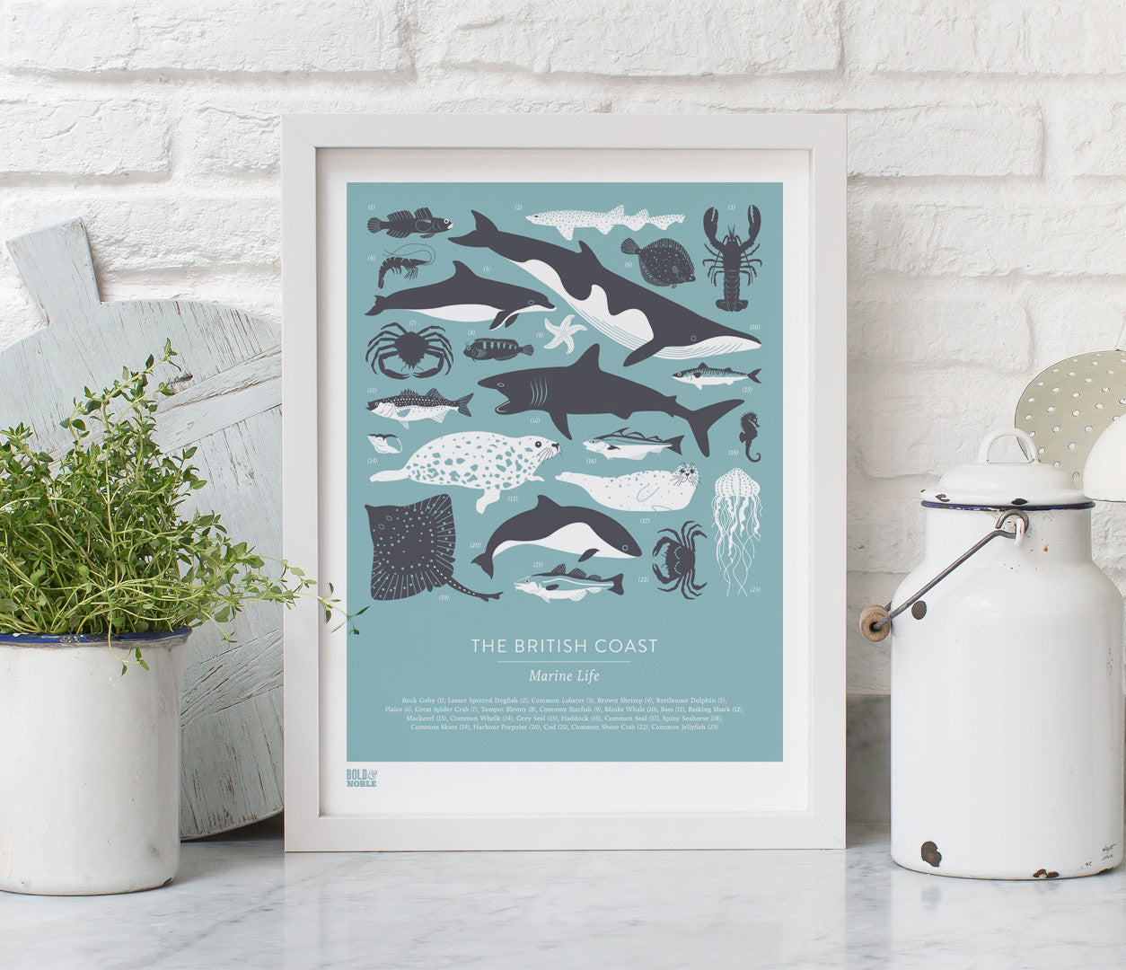 Pictures and wall art, screen printed British Coastal Marine animals poster in grey and blue