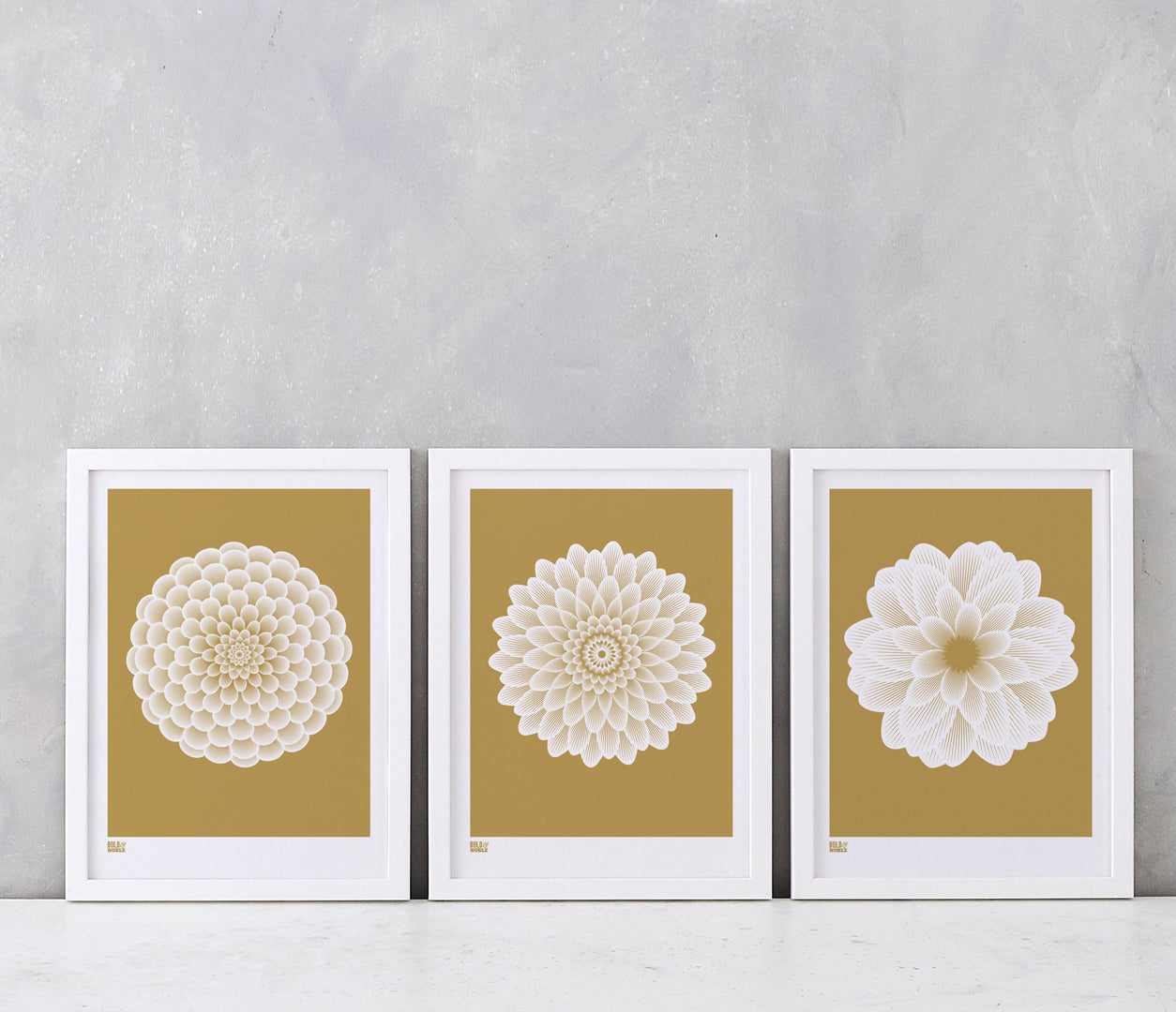 Flowers, Dahlias Set of 3 Art Prints for the Home in Bronze