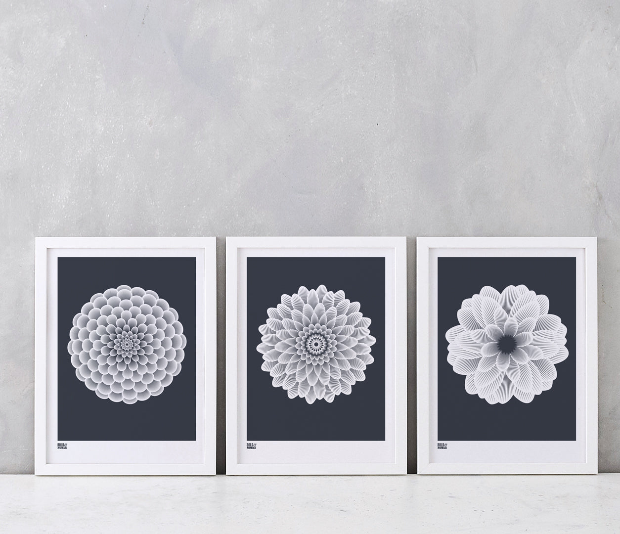 Flowers, Dahlias Set of 3 Art Prints for the Home in Slate Grey