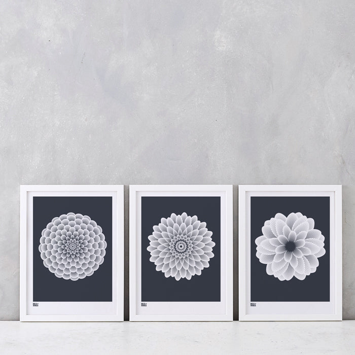 Dahlias Set of 3 Art Prints, screen printed in the UK, deliver worldwide