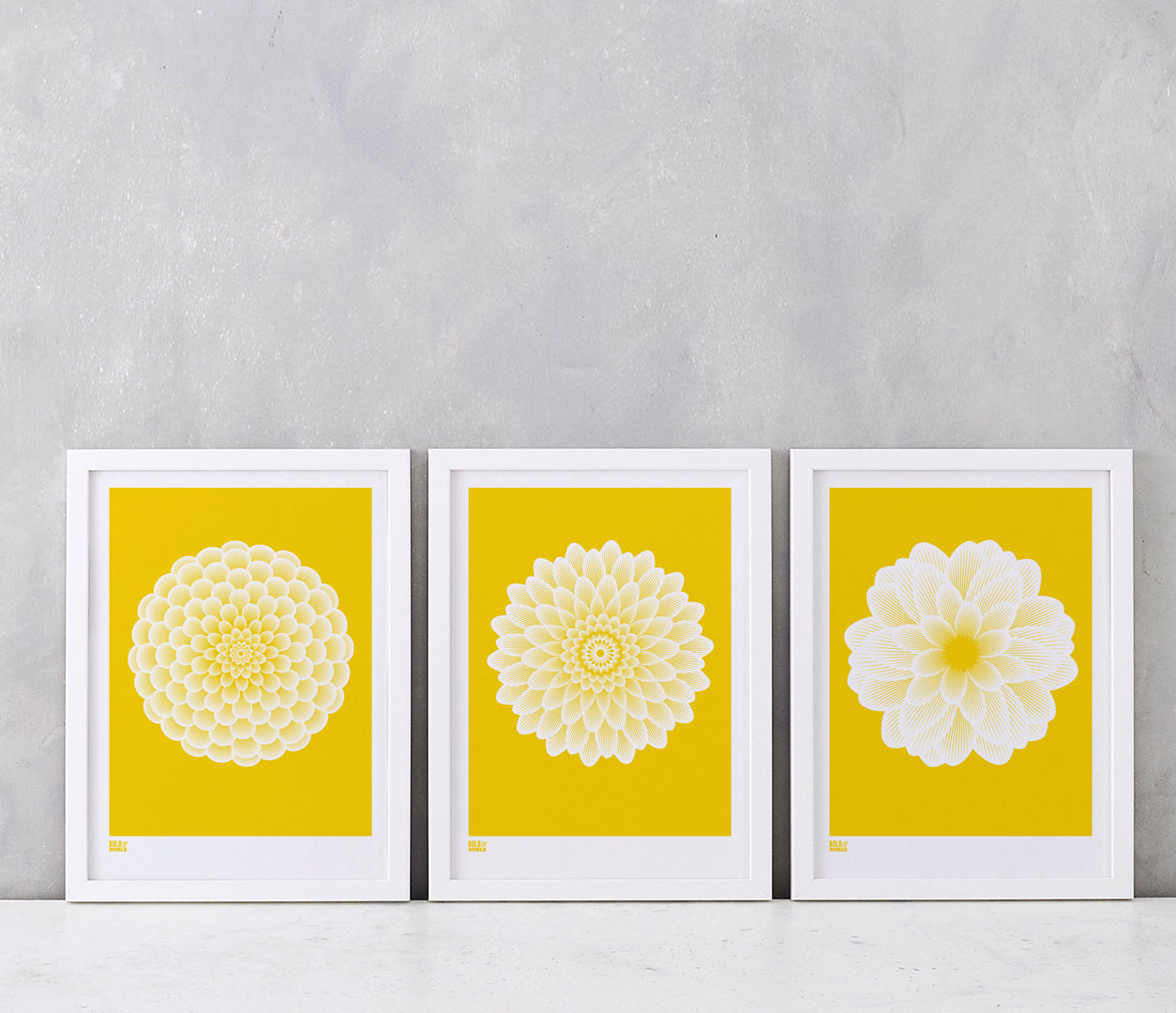 Flowers, Dahlias Set of 3 Art Prints for the Home in Yellow