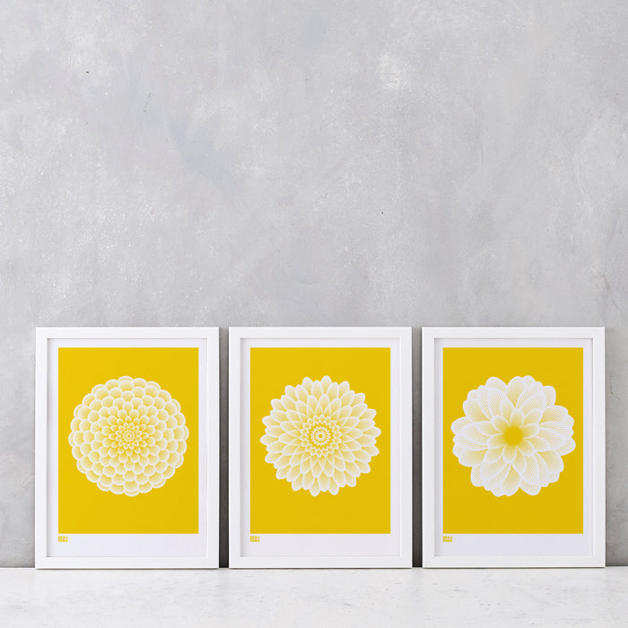 Dahlias: Set of 3 Prints in Bright Yellow