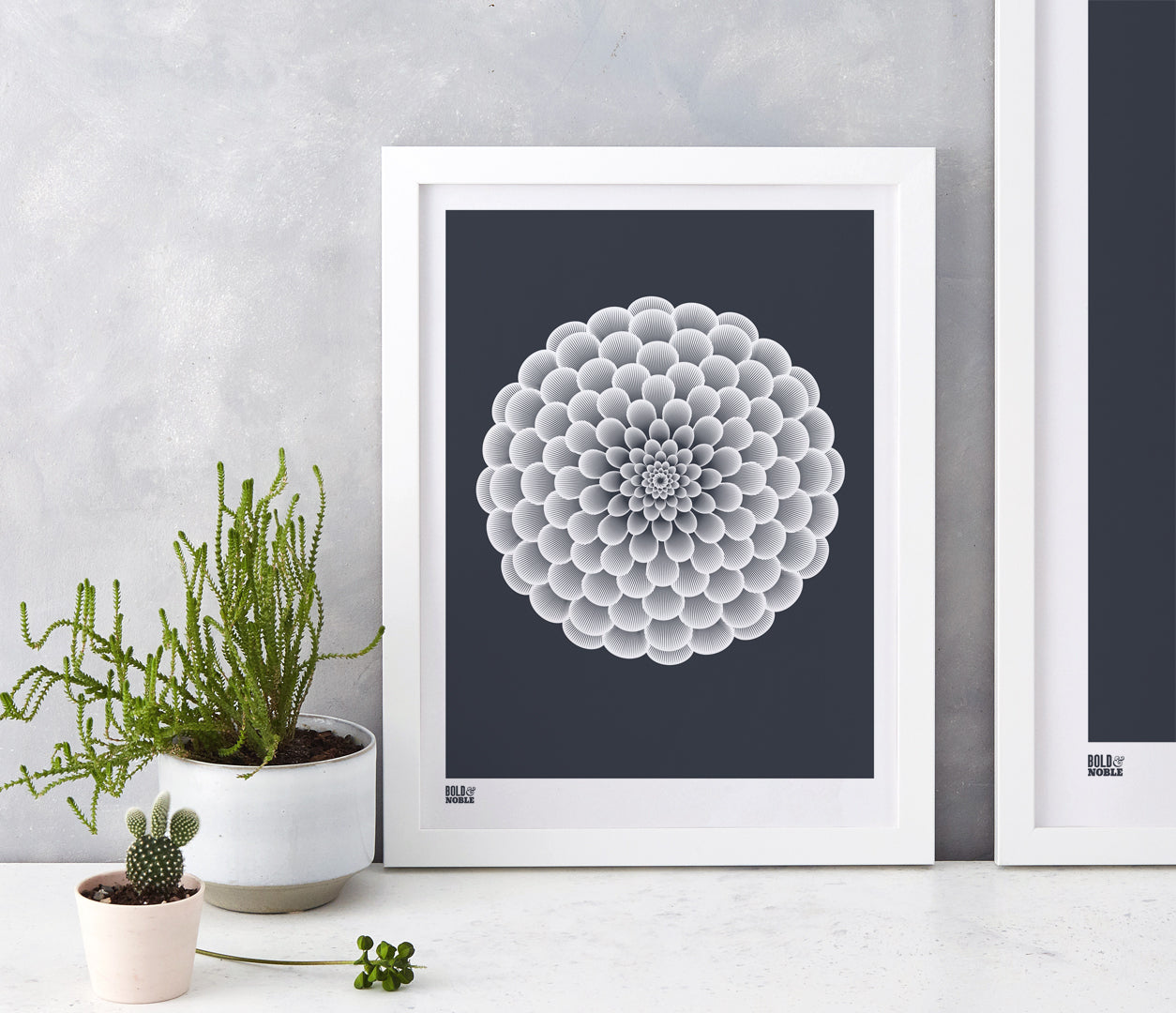 Wall Art ideas: Economical Screen Prints, Dahlia Pompon in sheer slate