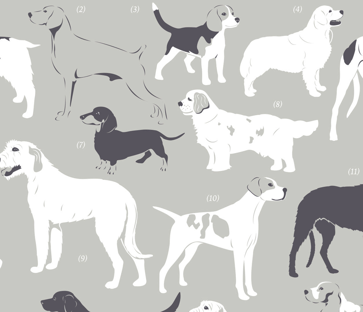 'Dog Breeds: Gun Dogs and Hounds' Art Print in Putty