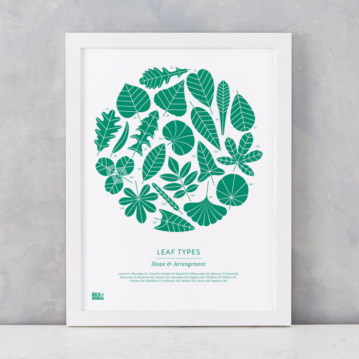 Leaf Types screen print in Emerald Green, screen printed on recycled card, delivered worldwide