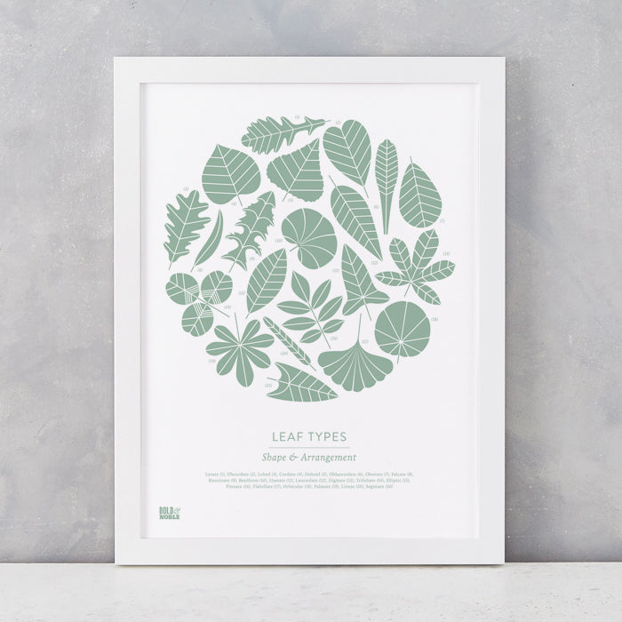 Leaf Types screen print in Seafoam Green, screen printed on recycled card, delivered worldwide