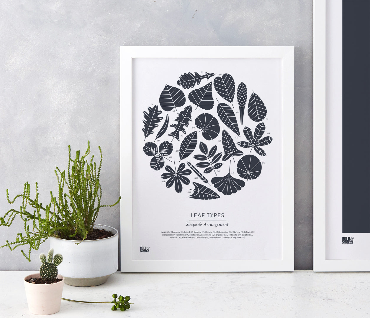 Wall Art Ideas: Economical Screen Prints, Leaf Types printed in slate grey