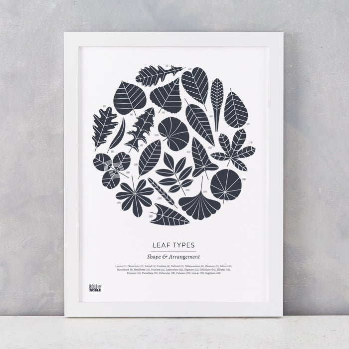 Leaf Types screen print in Sheer Slate, screen printed on recycled card, delivered worldwide