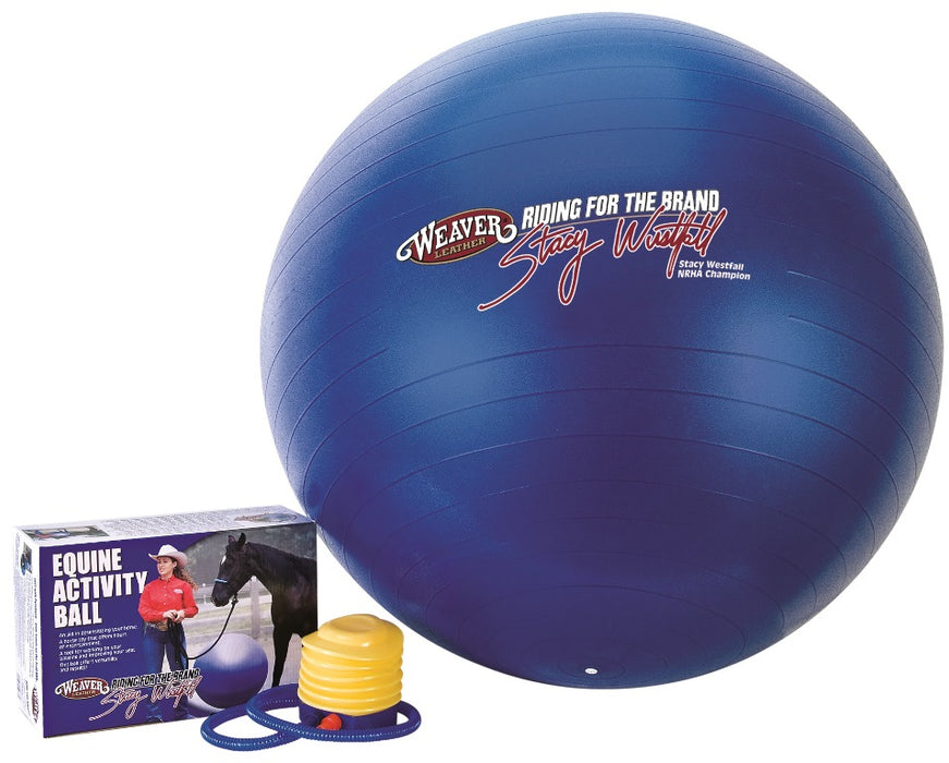 Stacy Westfall Spielball medium blau