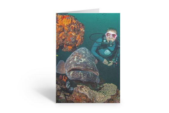 PADI- Create Your Own Greeting Card