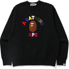 COLLEGE APPLIQUE RELAXED CREWNECK MENS