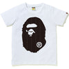 TEXT STRIPE BIG APE HEAD TEE LADIES