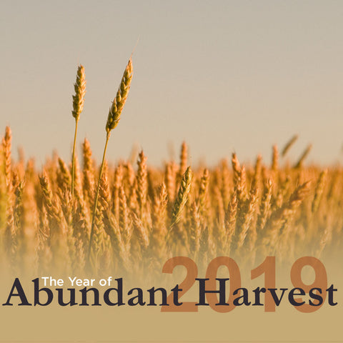 2019: The Year of Abundant Harvest