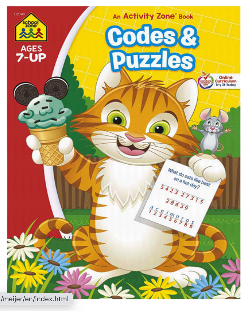 Codes & Puzzles Activity Zone Workbook