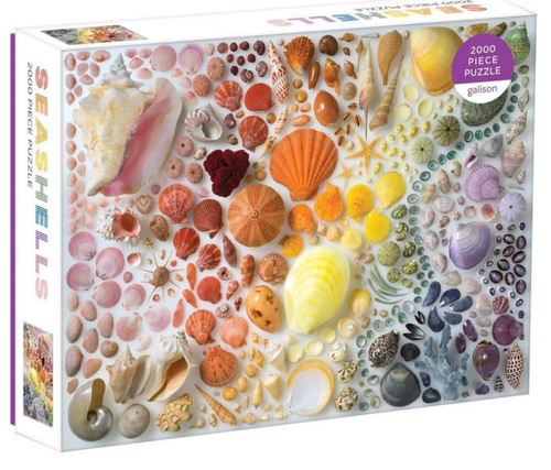 Seashells 200 Piece Puzzle - Galison