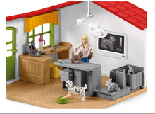Veterinarian Practice with Pets - Schleich