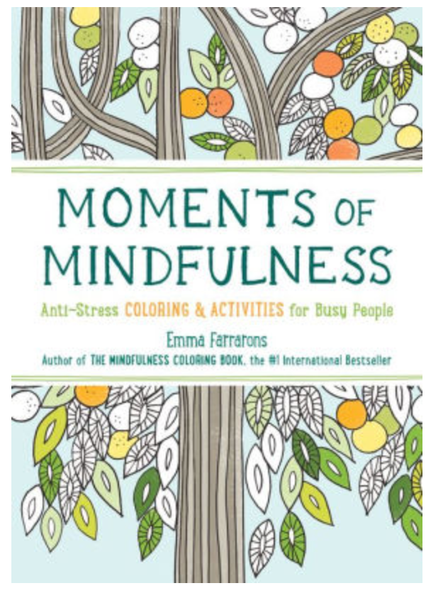 moments of mindfulness emma farrarons