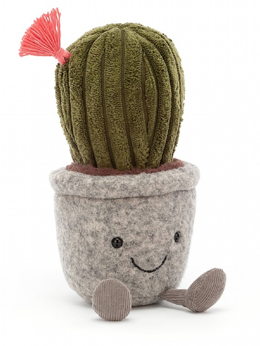 I am Silly Succulant Cactus