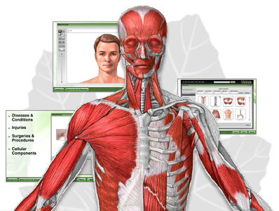 A.D.A.M. Interactive Anatomy Online - High School Edition