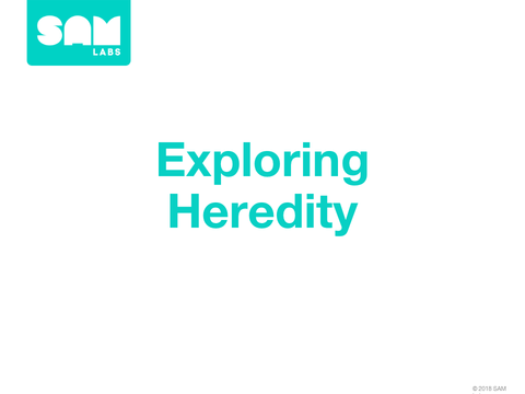 4.7   探索遺傳 Exploring Heredity