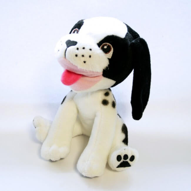 Domino the dog